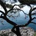 geonautephoto3.jpg