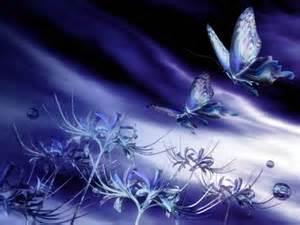 th.jpgpapillons